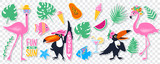 Vector summer set with pink flamingo, monstera, tropical leaves - 208811009
