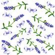 water colour flower frames - 208814262