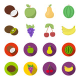 Kiwi, grapes, cherry, banana.Fruits set collection icons in cartoon,flat style vector symbol stock illustration web.