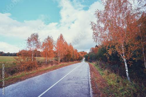 Fotobehang Herfst Fall season. Beautiful landscape with empty road.
