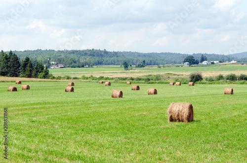 Aluminium Canada Farm field