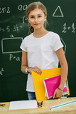 Beatiful smiling pupil in classroom at the elementary school, back to school. - 208867019