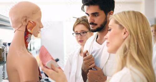Leinwanddruck Bild Students of medicine examining anatomical model in classroom