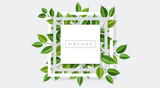 Geometric nature frame with tree branches and leaves. Vector illustration for nature related and eco design - 208885089