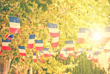 French flags garland, plane trees and sun background in a village square - 208894038