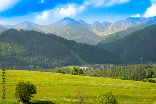 Fotobehang Groen blauw A green glade covered with trees and in the background a mountain range. A beautiful landscape.