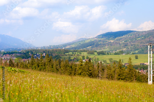 Aluminium Honing A green glade covered with trees and in the background a mountain range. A beautiful landscape.
