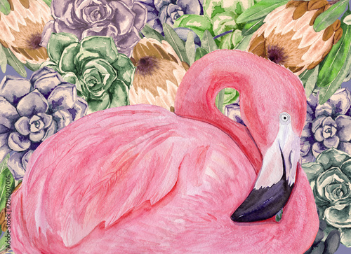 Watercolor flamingo with succulents and protea flowers. Hand drawn illustration. - 208907016