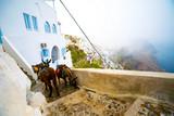 Ânes, ville de Fira, île de Santorin, Cyclades, Grèce