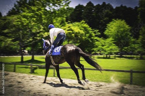 Fotobehang Paarden Japanese Keiba, horse ride