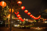 Chinese new year lanterns decoration in park - 208922893