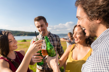 Group of men and women at BBQ party in field toasting with drinks