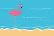 rosa flamingo steht im wasser am strand