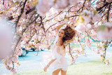 Spring woman in cherry flower bloom concept with girl sakura - 208951454