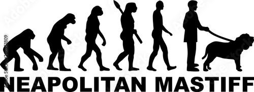 Neapolitan Mastiff evolution word
