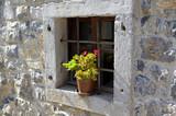 petit fenêtre bucolique fleurie d'un géranium