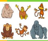 monkeys animal characters cartoon set