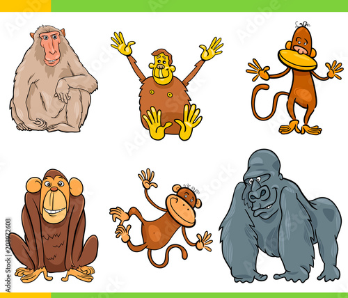 Fototapeta monkeys animal characters cartoon set