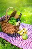 Picnic basket in summer park - 208973206