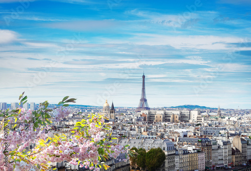 skyline of Paris with eiffel tower