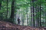 Alone man in wild forest. Travel and adventure concept. Mountains landscape photography - 208982879