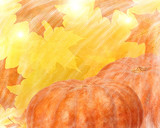 two bright orange pumpkins on maple leaves wiped background - 209057495