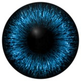 Blue eye texture with black fringe and white background