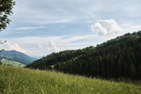 Mountain landscape of Little Fatra with forests, hills and grass, under the blue sky - near Terchova and Zazriva in Slovakia