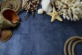 Marine background with seashells and rope. - 209094078