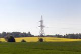 spring landscape - 209150687