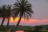 Flagler Beach, Florida - 209155483