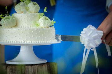 cutting a wedding cake  in wedding ceremony.
