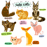 Set of cartoon cats characters - 209165814