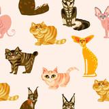Cartoon cats seamless pattern,  Illustration  breeds of cats - 209165893