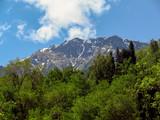 Mountains over Almaty