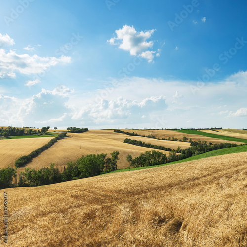 Fotobehang Zomer Countryside landscape, cultivated fields and blue sky with clouds