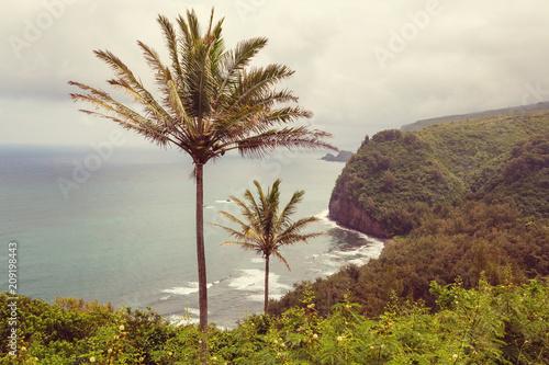 Fotobehang Galyna A. Hawaii