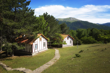 Beautiful cottages in the background of the mountains on a summer day