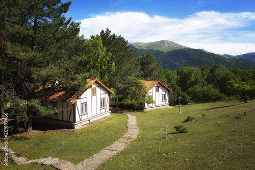 Beautiful cottages in the background of the mountains on a summer day - 209199466