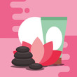 stone massage therapy and cream herbal spa wellness vector illustration