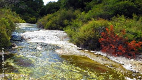 Geyser in Rotorua - 209210239