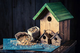 Project of small bird feeder and blue construction plan - 209217478
