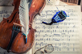 Closeup of vintage sheets, violin and ink with feather - 209217677