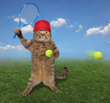 The cat in a red cap is playing tennis on the court.