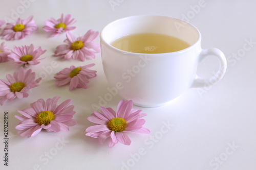 Romantic background with cup of coffee with pink Leucanthemum flowers over white table. Soft photo. Greeting card style. place for text, Top view flat lay with copy space for slogan or text.