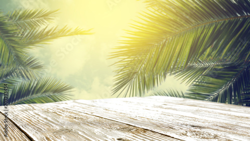 table background of free space and mood landscape of palms