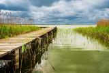 Steg am Bodden auf dem Fischland-Darß - 209241270