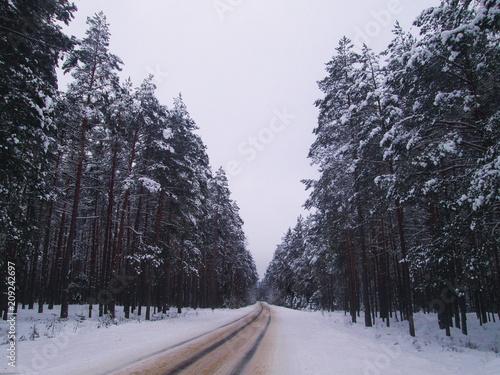 Foto Murales road