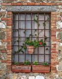 flower pots outside a window