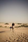 promenade en dromadaires - 209254447